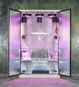 The Silverback: Turn-key Stealth Hydroponic Grow Box with Cloning Chamber