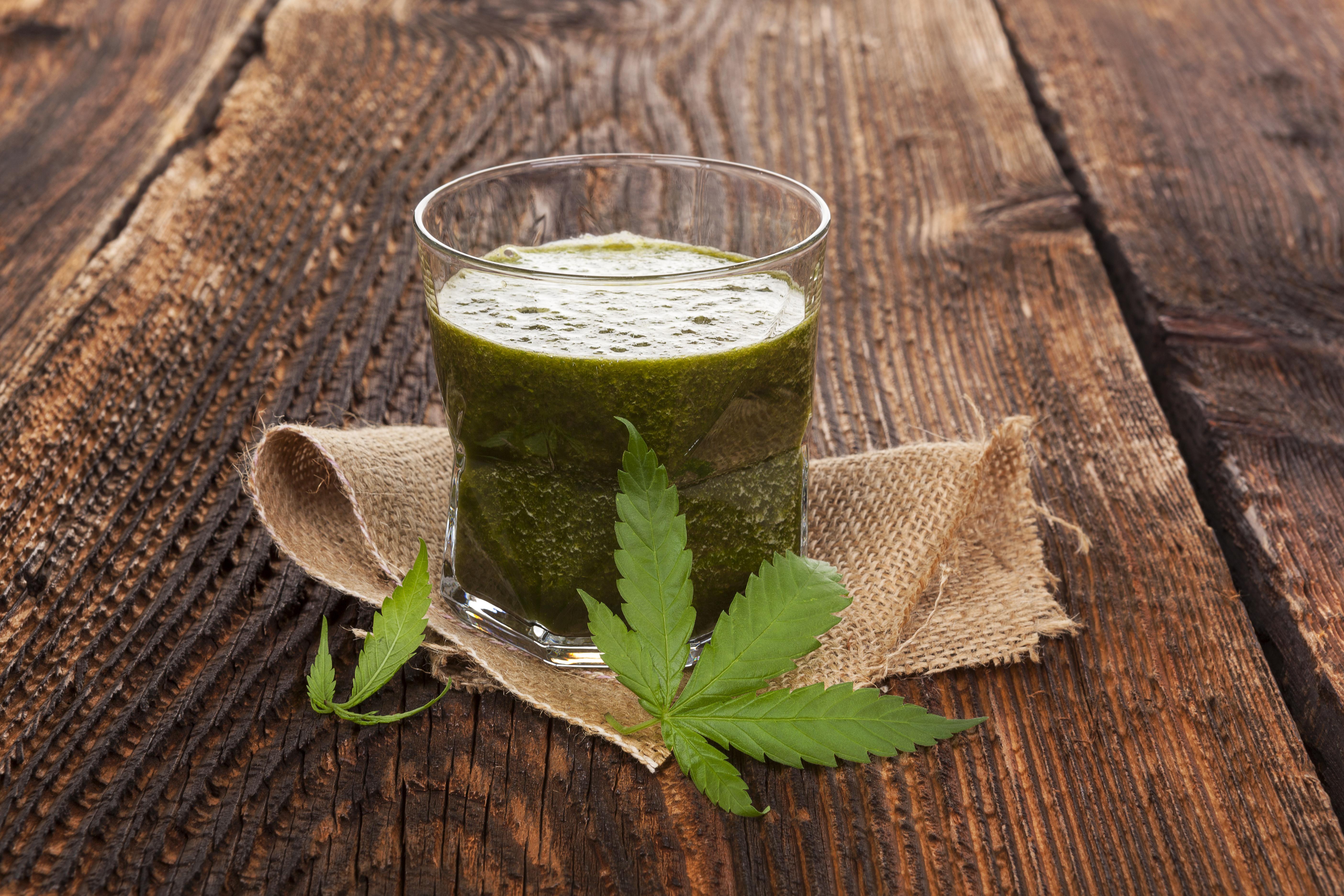 Raw Cannabis juicing